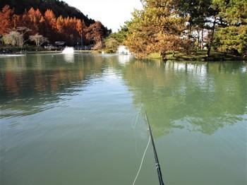 191208秋川湖 (23).JPG