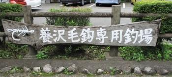 200627養沢 (1).JPG