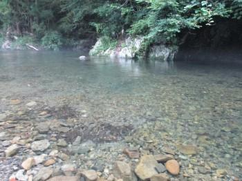 200627養沢 (29).JPG