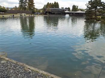 201021秋川湖 (7).JPG