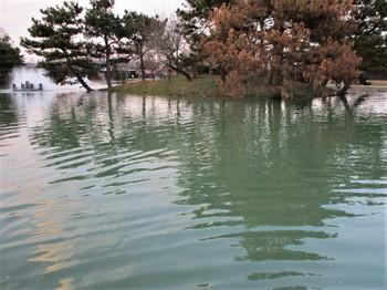 20200113秋川湖 (33).JPG