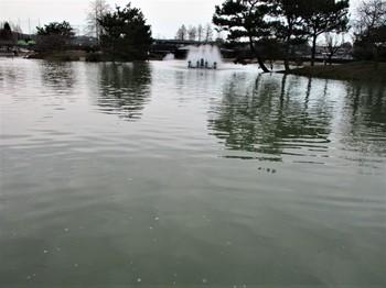 20200126秋川湖 (22).JPG