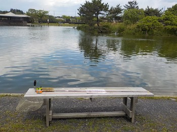 210502秋川湖 (2).JPG